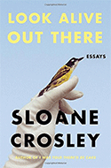 Discounted copies of Look Alive Out There: Essays by Sloane Crosley
