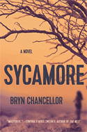 Discounted copies of Sycamore by Bryn Chancellor