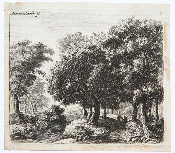 Etching: The Forest Lane