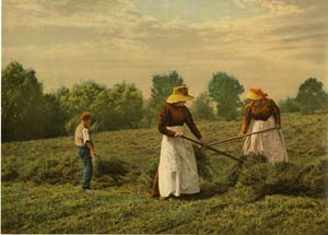 Haymaking, unknown location